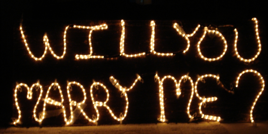 Christmas lights proposal