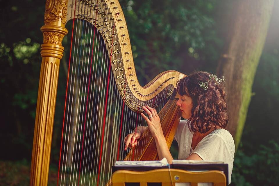 The Derbyshire Harpist