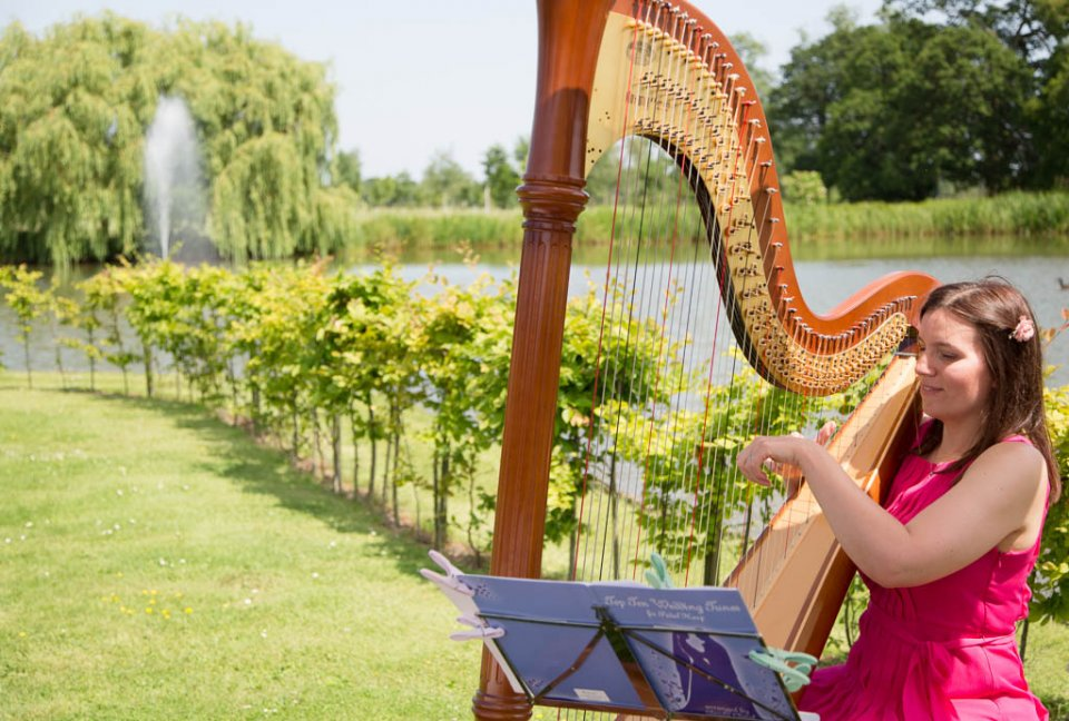 The East Midlands Harpist