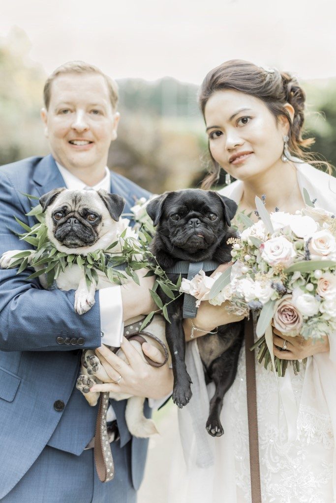 Bride and Groom with Pugs